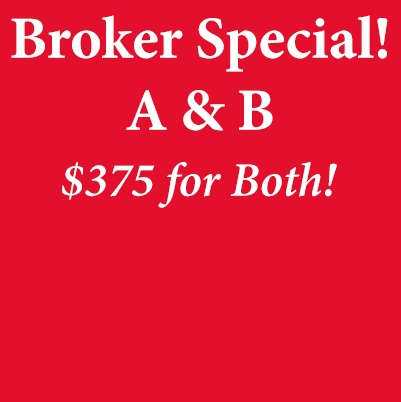Broker A & B Special Package Video Streaming Version real estate broker, sc real estate, real estate school of sc, broker's license